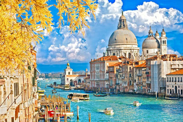 Find Bachelor's degrees in Italy