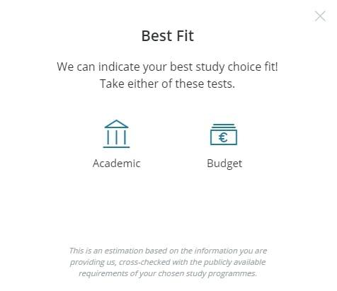 Study an international Master's degree