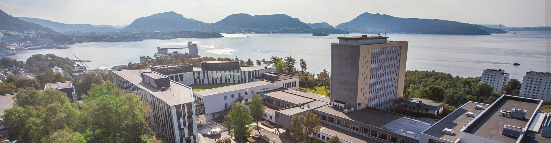 Strategy and Management M Sc at NHH Norwegian School of Master s in ...