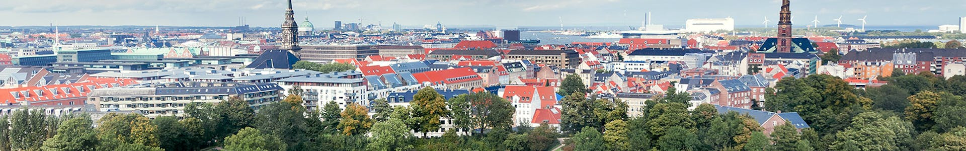 Study Business Administration in Denmark