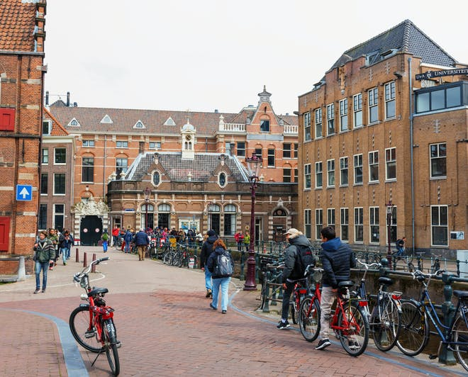 Study abroad at the best universities in the Netherlands