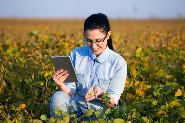 Why You Should Apply to a Master\'s in Agricultural Economics in 2019 ...