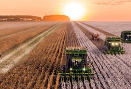 Why You Should Apply to a Master's in Agricultural Economics in 2019