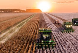 Why You Should Study a Master's in Agricultural Economics in 2021