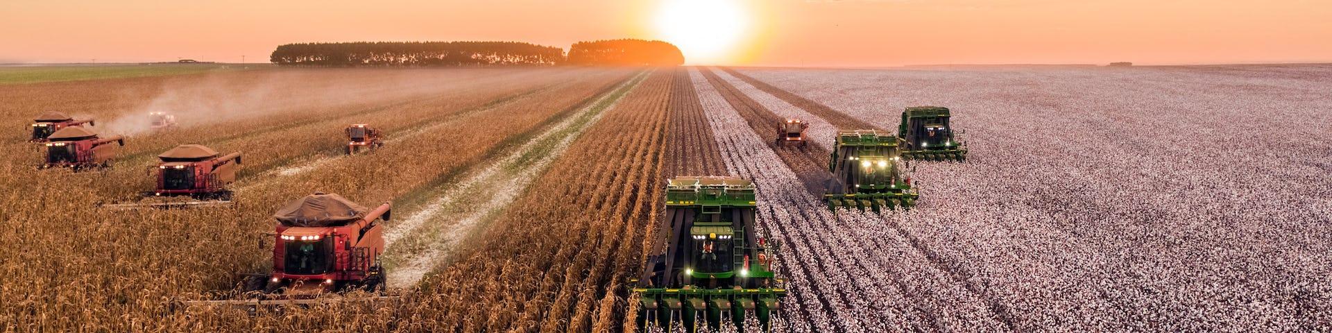 agricultural economics articles
