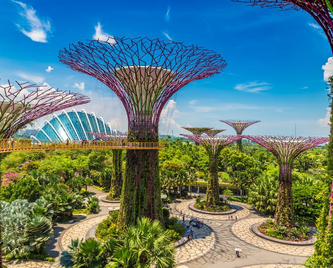Supertree Grove, Gardens by the Bay, in Singapore