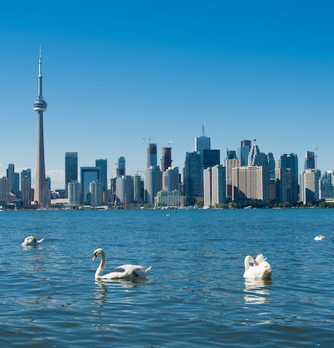 Best 91 Business Administration Master's Degrees in Canada 2021 -  Mastersportal.com