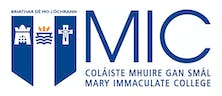 Mary Immaculate College, University of Limerick